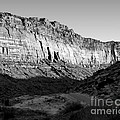 Colorado River Cliff Bw by Tim Richards