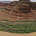 Colorado River Gooseneck by Debby Richards
