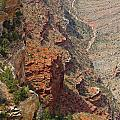 Colorado River In The Grand Canyon by Denise Mazzocco