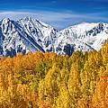 Colorado Rocky Mountain Autumn Magic by James BO  Insogna