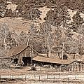 Colorado Rocky Mountain Barn Sepia by James BO Insogna