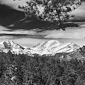 Colorado Rocky Mountain View Black And White by James BO Insogna