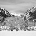 Colorado Rocky Mountain Winter Horseshoe Park Bw by James BO Insogna