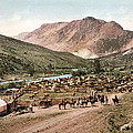 Colorado Roundup 1897 by Unknown