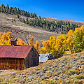 Colorado Rustic Rural Barn With Autumn Colors  by James BO  Insogna