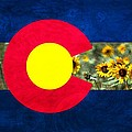 Colorado State Flag In Van Gogh by Barbara Chichester