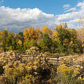 Colorado Urban Autumn Landscape by Cascade Colors