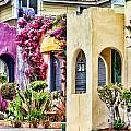 Colored Cottages By Diana Sainz by Diana Raquel Sainz