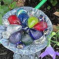 Colored Glass Shells by Elisabeth Ann