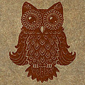 Colored Owl 2 Of 4  by Kyle Wood