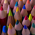 Colored Pencils Close Up by Garry Gay