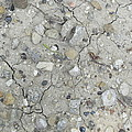 Ground Rocks by Donna Wilson