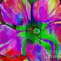 Colorful African Violet by Barbara Griffin