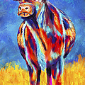 Colorful Angus Cow by Michelle Wrighton