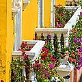 Colorful Balconies by Jess Kraft