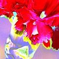 Colorful Carnation by Carol Lynch