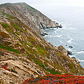 Colorful Cliffs At Point Reyes by Jeff Goulden