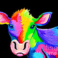 Colorful Cow-cow-a-bunga by Nick Gustafson