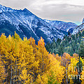 Colorful Crested Butte Colorado by James BO  Insogna