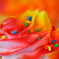 Colorful Cup Cake by Darren Fisher