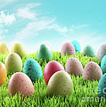 Colorful Easter Eggs In A Field Of Grass by Sandra Cunningham