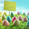 Colorful Easter Eggs With Sign In A Field by Sandra Cunningham