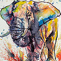 Colorful Elephant by Kovacs Anna Brigitta