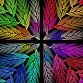 Colorful Feather Fern - 4 X 4 - Abstract - Fractal Art - Square by Andee Design