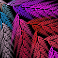 Colorful Feather Fern - Abstract - Fractal Art - Square - 4 Lr by Andee Design