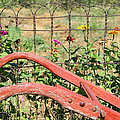 Colorful Fence Row by Deb Buchanan