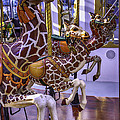 Colorful Giraffes Carrousel by Garry Gay