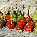 Colorful Gourds by Bob Phillips