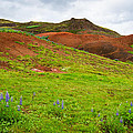 Colorful Iceland Landscape With Green Orange Brown Tones by Matthias Hauser