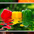 Colorful Kitchen Collage by Kaye Menner