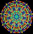 Colorful Kolide  by Barbara Snyder