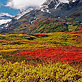 Colorful Land - Alaska by Juergen Weiss