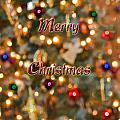 Colorful Lights Christmas Card by Debbie Portwood