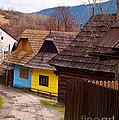 Colorful Log Homes by Les Palenik