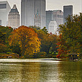 Colorful Magic In Central Park New York City Skyline by Silvio Ligutti