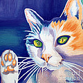 Talk To The Paw Cat by Robyn Saunders