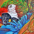 Colorful Parrot by Paola Correa de Albury