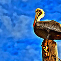 Colorful Pelican by Alice Gipson