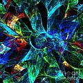Colorful Petals by Klara Acel