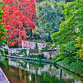 Colorful Riverwalk by David and Carol Kelly