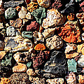 Colorful Rock Wall With Border by Carol Groenen