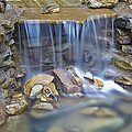 Colorful Rocks And Water by Cary Kennedy