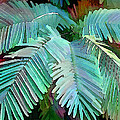 Colorful Tropical Leaves In The Jungle by Elaine Plesser