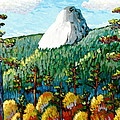 Colorful View Of Idyllwild California by Gerry High