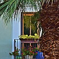 Colorful Window by Richard Jenkins
