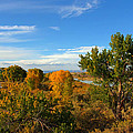 Colors Along The Colorado by Bob Hislop